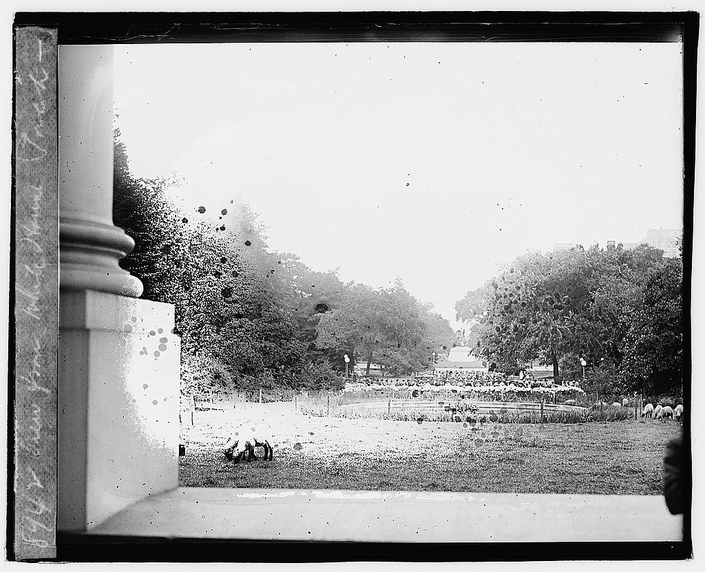 16 x 20 Reprinted Old Photo ofView from White House porch 1920 National Photo Co  34a