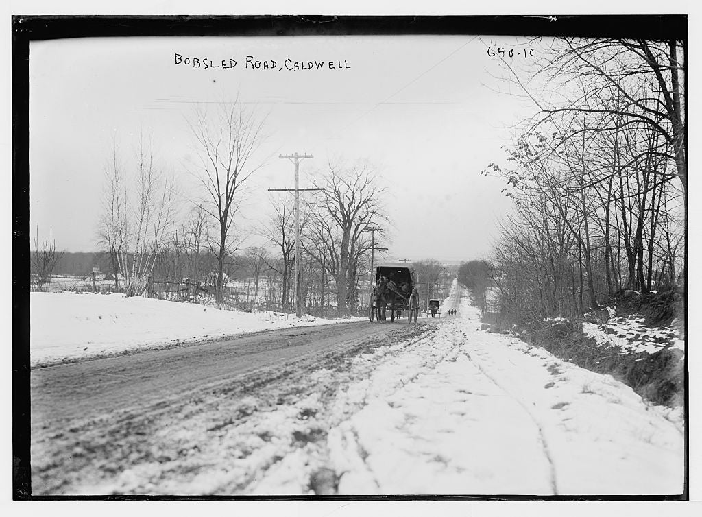8 x 10 Photo of Carriage on Bobsled Road, Caldwell, N.J. 1890-1920 G. Bain Collection 87a