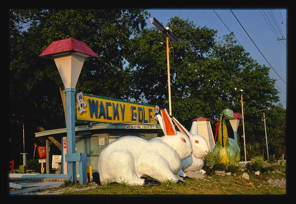 8 x 12 Photo of Wacky Golf sign, Wacky Golf, Jacksonville, Florida 1979 Margolies, John 02a