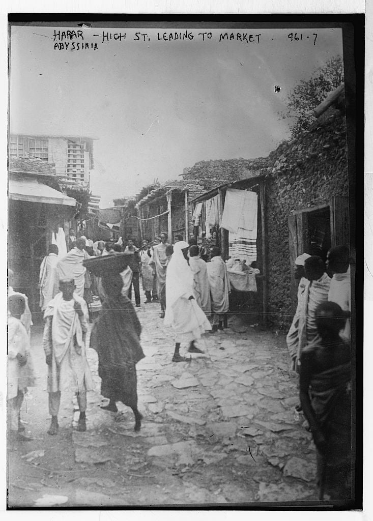 8 x 10 Photo of Street scene: Harar-High St. leading to market, Abyssinia Ethiopia 1890-1920 G. Bain Collection 28a