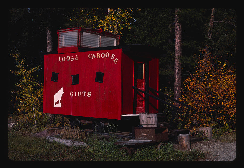 8 x 12 Photo of Caboose and Loose Caboose, Whitefish, Montana 1987 Margolies, John 77a
