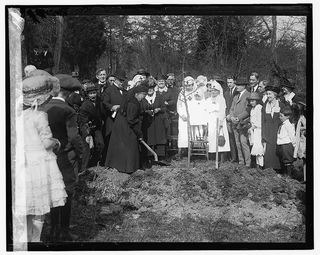 16 x 20 Gallery Wrapped Frame Art Canvas Print of Clara Barton tree planting 1922 National Photo Co  44a