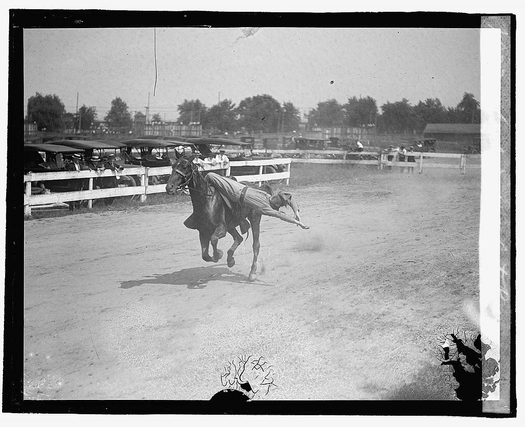 16 x 20 Reprinted Old Photo ofCavalry drill at auto races 1922 National Photo Co  83a