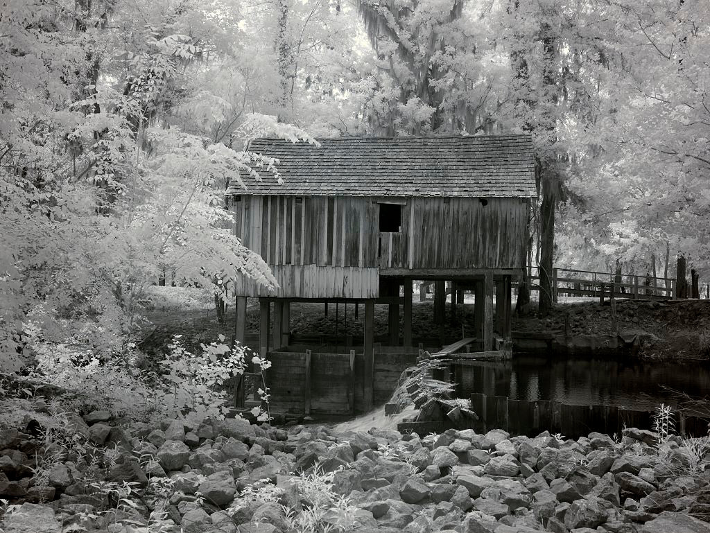 18 x 24 Photograph reprinted on fine art canvas  of Rikard's Mill near Beatrice Alabama r93 2010 May 1 by Highsmith, Carol M.