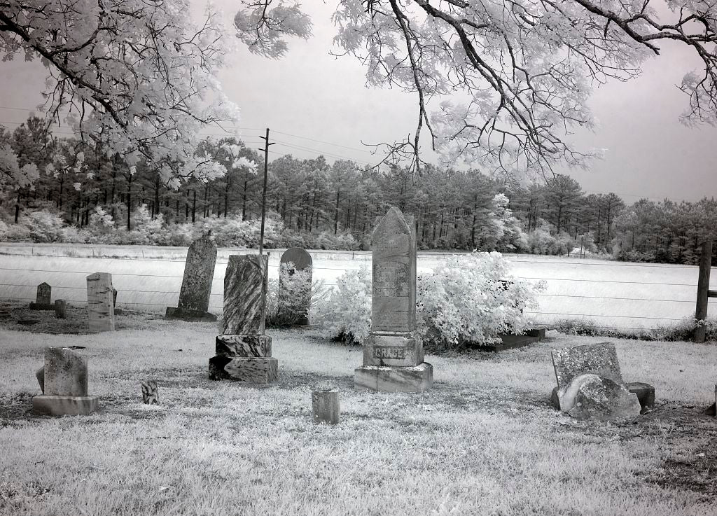 18 x 24 Photograph reprinted on fine art canvas  of Cemetery in a cow pasture in rural Monroe County Alabama r98 2010 May 2 by Highsmith, Carol M.