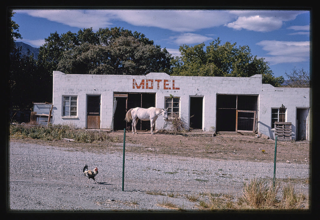 8 x 12 Photo of Motel near Nickel Creek, Nickel Creek, Texas 1993 Margolies, John 67a