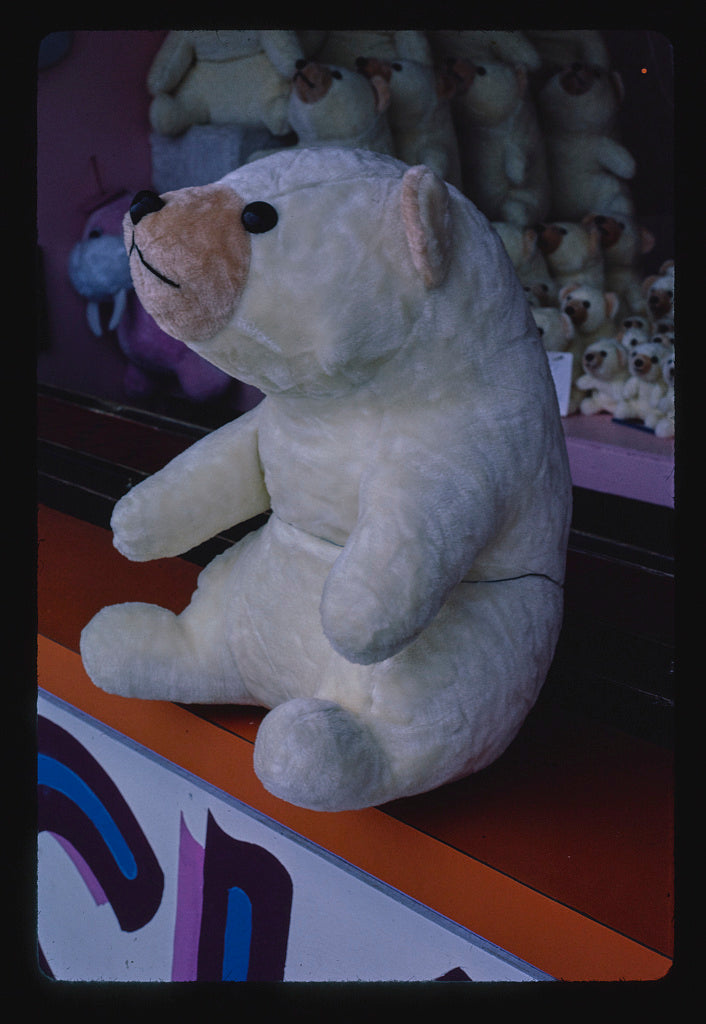 8 x 12 Photo of Prizes bear at game booth, Seaside Heights, New Jersey 1978 Margolies, John 35a