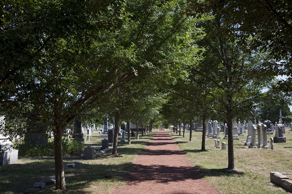 18 x 24 Photograph reprinted on fine art canvas  of Congressional Cemetery Washington D.C. r70 2010 by Highsmith, Carol M.,