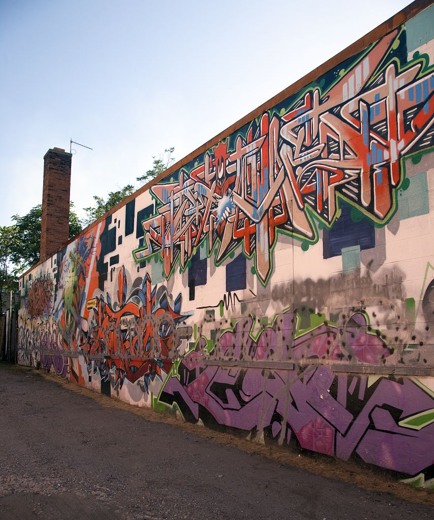 18 x 24 Photograph reprinted on fine art canvas  of Murals in the Anacostia neighborhood of SE Washington D.C. r74 2010 by Highsmith, Carol M.,