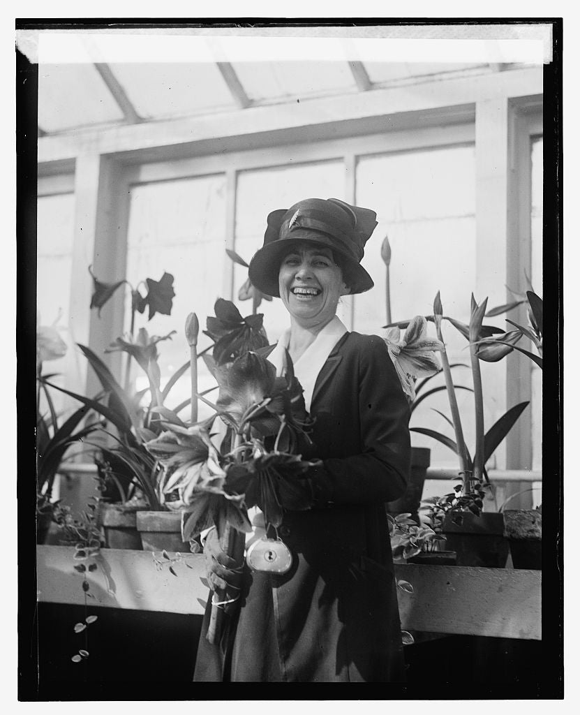 16 x 20 Reprinted Old Photo ofMrs. Coolidge, Amaryllis show, 1924, 3/15/24 1924 National Photo Co  02a