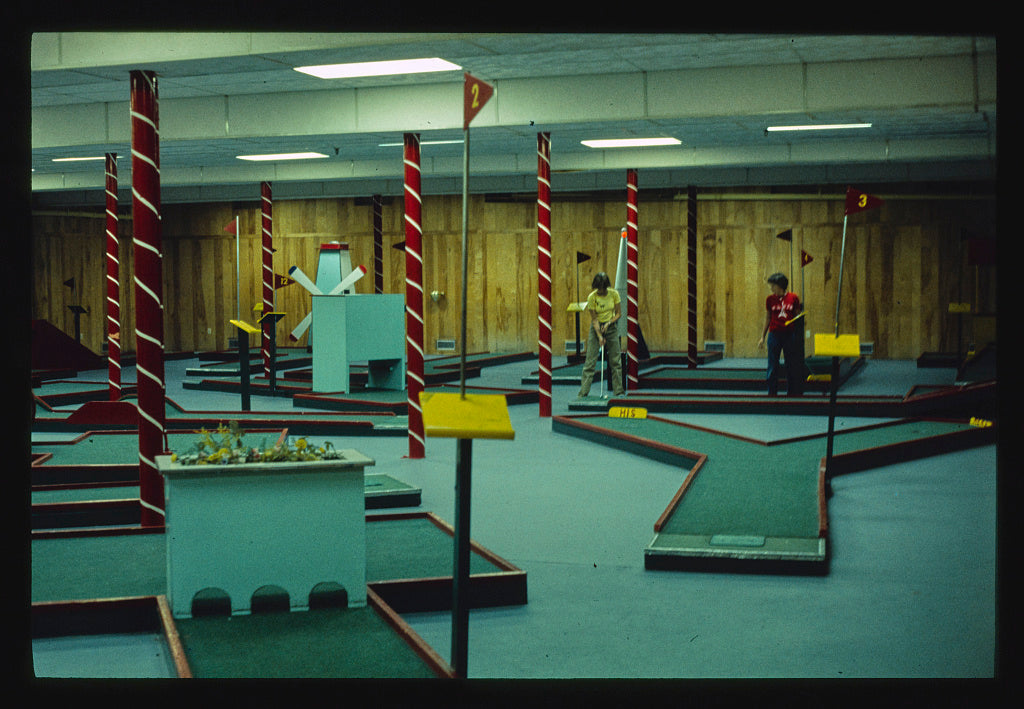 8 x 12 Photo of Homowack indoor miniature golf, Mamakating, New York 1977 Margolies, John 71a