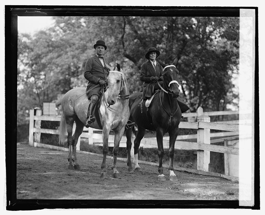 16 x 20 Reprinted Old Photo ofBrig. Gen. & Mrs. Wm. Mitchell, 9/24/24 1924 National Photo Co  78a