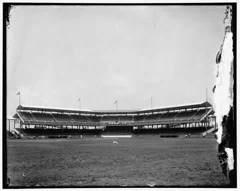 8 x 10 Reprinted Old Photo of Baseball Stadium 1910-20 Harris & Ewing 06a