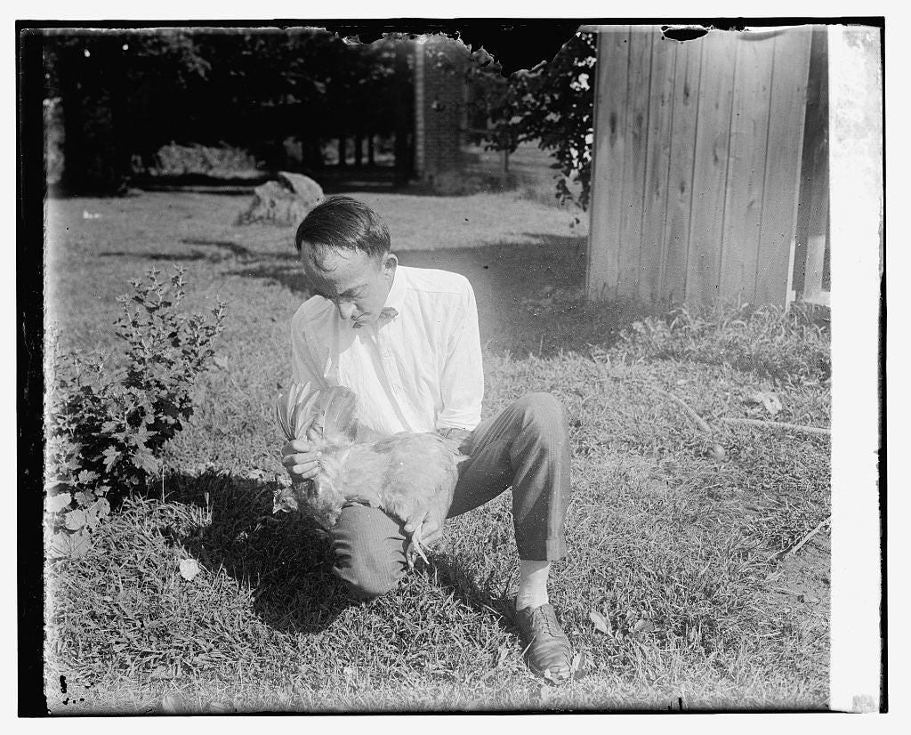 16 x 20 Reprinted Old Photo ofJ.J. Culver of Ag. Ex. Station, Vienna, Va., studying lice, 9/18/25 1925 National Photo Co  64a
