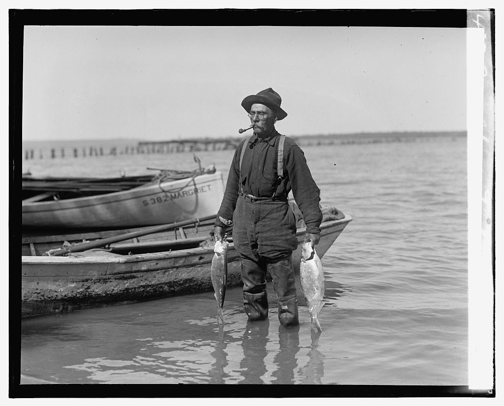 16 x 20 Gallery Wrapped Frame Art Canvas Print of Shad fishing on the Potomac 1921 National Photo Co  07a