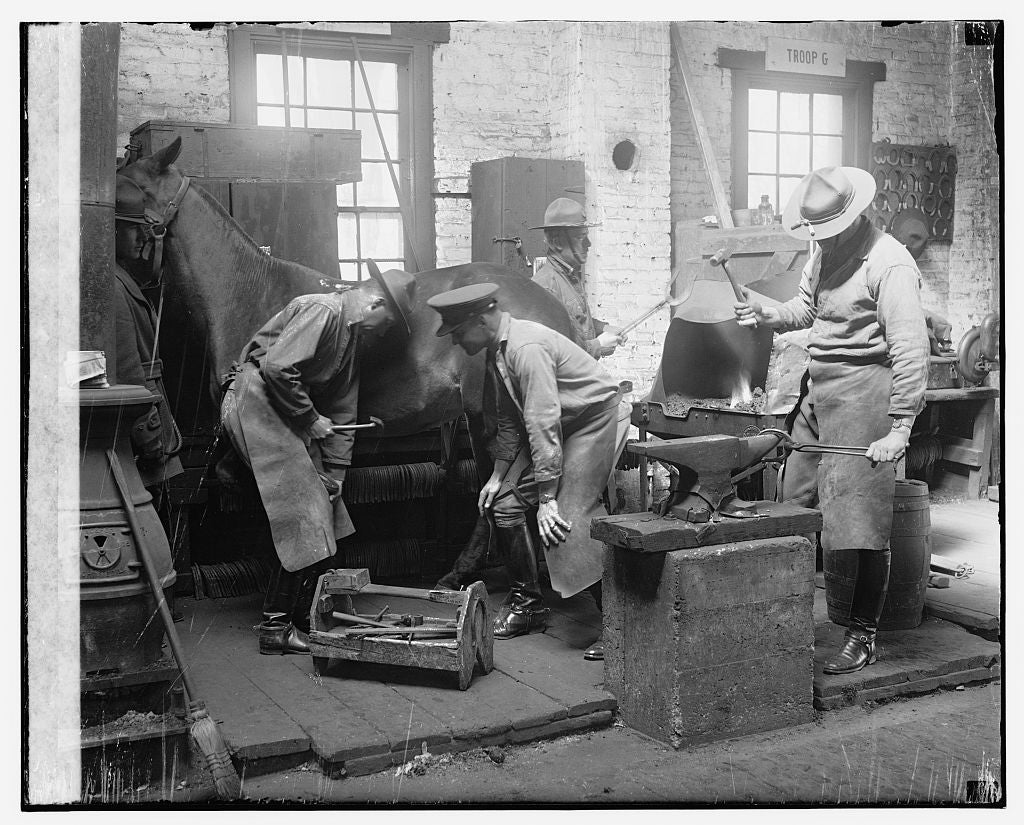 16 x 20 Gallery Wrapped Frame Art Canvas Print of  Horse shoeing 1909 National Photo Co  97a