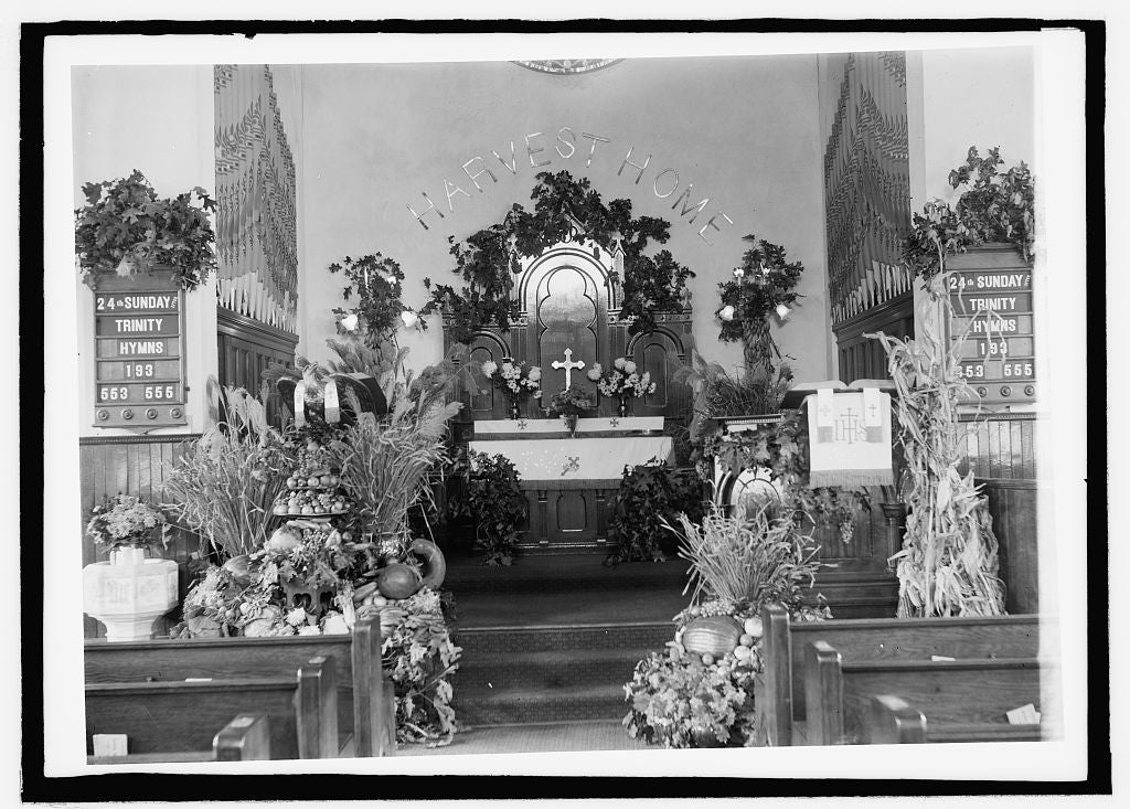 8 x 10 Reprinted Old Photo of  St. Mark's Church interior 1909 National Photo Co  73a