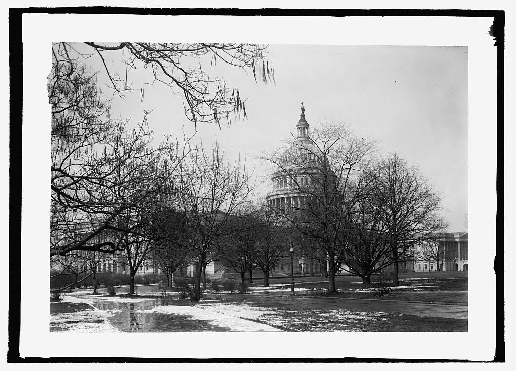 16 x 20 Reprinted Old Photo ofCapitol 1909 National Photo Co  95a