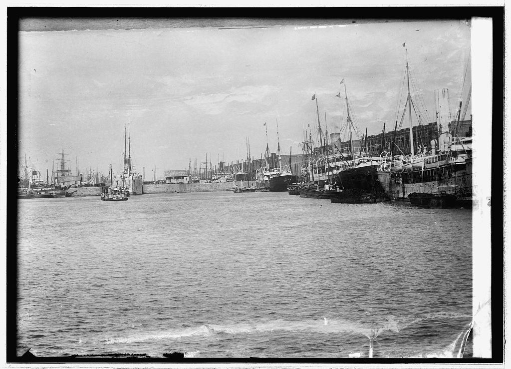 8 x 10 Reprinted Old Photo of Argentine, shipping Buenos Aires 1914 National Photo Co  47a