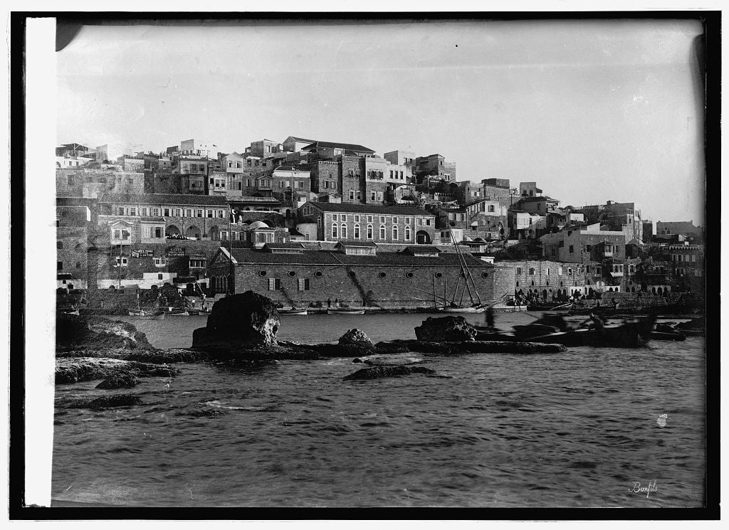 8 x 10 Reprinted Old Photo of Water Front. Channel at Jaffa 1914 National Photo Co  29a