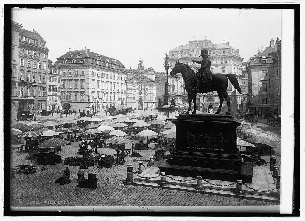 16 x 20 Reprinted Old Photo ofMarket place at Vienna, Austria 1914 National Photo Co  89a