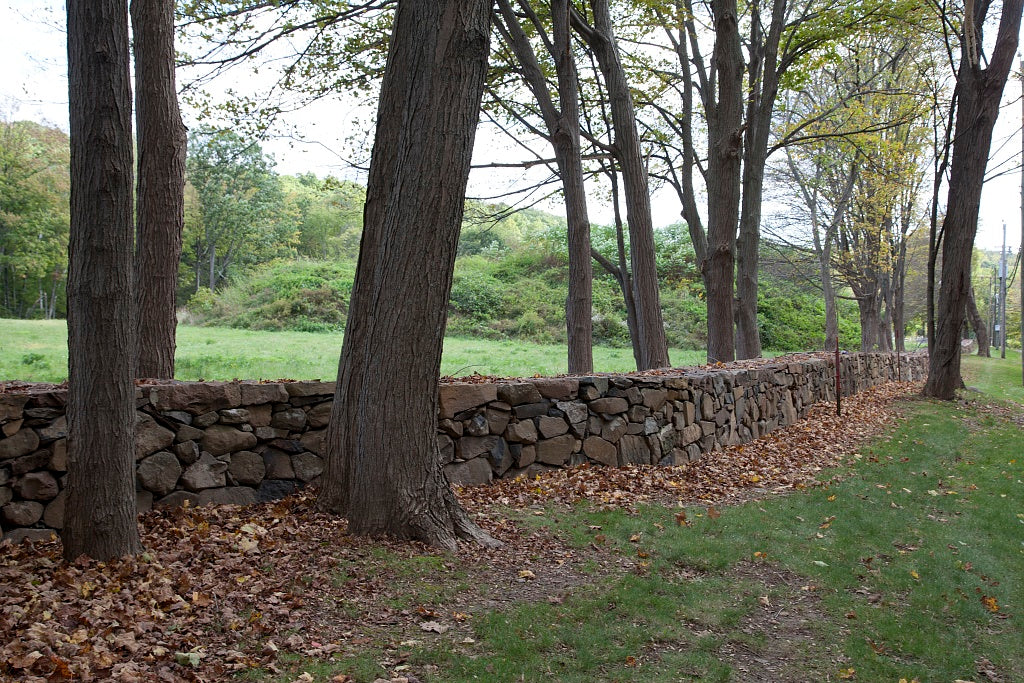 18 x 24 Photograph reprinted on fine art canvas  of Connecticut stone fences r25 2011 October by Highsmith, Carol M.