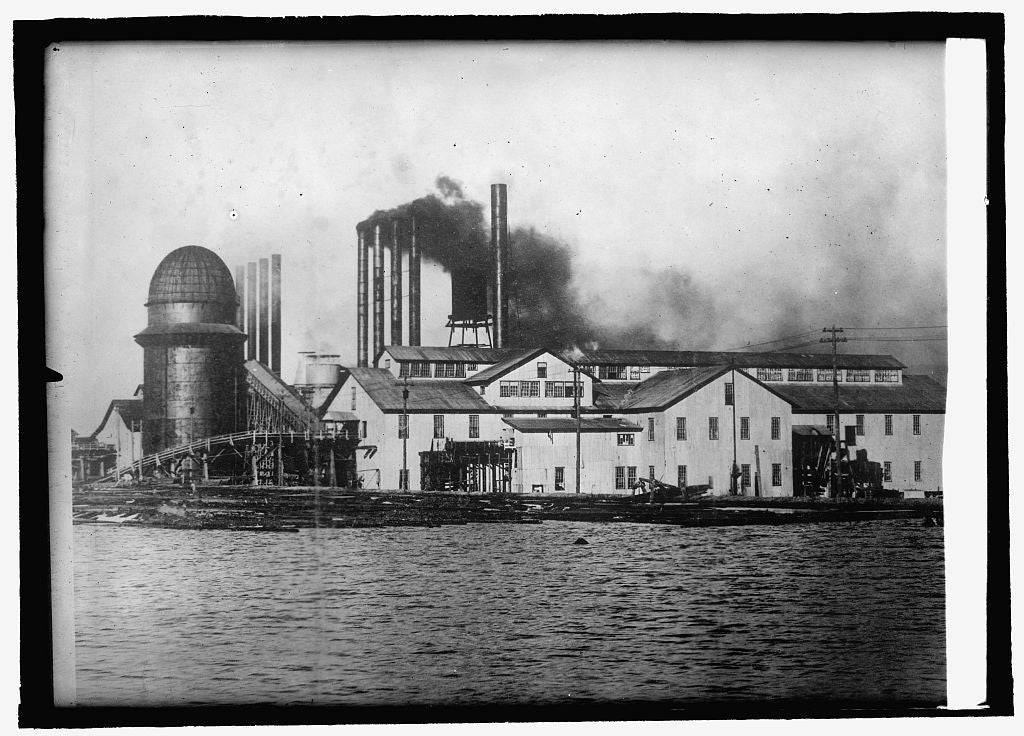 8 x 10 Reprinted Old Photo of Largest lumber mill in the world, Pearson, Chihuahua, Mexico 1914 National Photo Co  32a