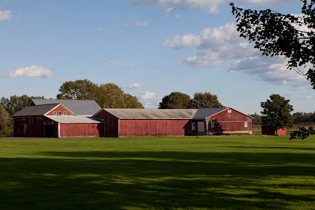 18 x 24 Photograph reprinted on fine art canvas  of Tobacco barns in Suffield Connecticut r57 2011 October by Highsmith, Carol M.