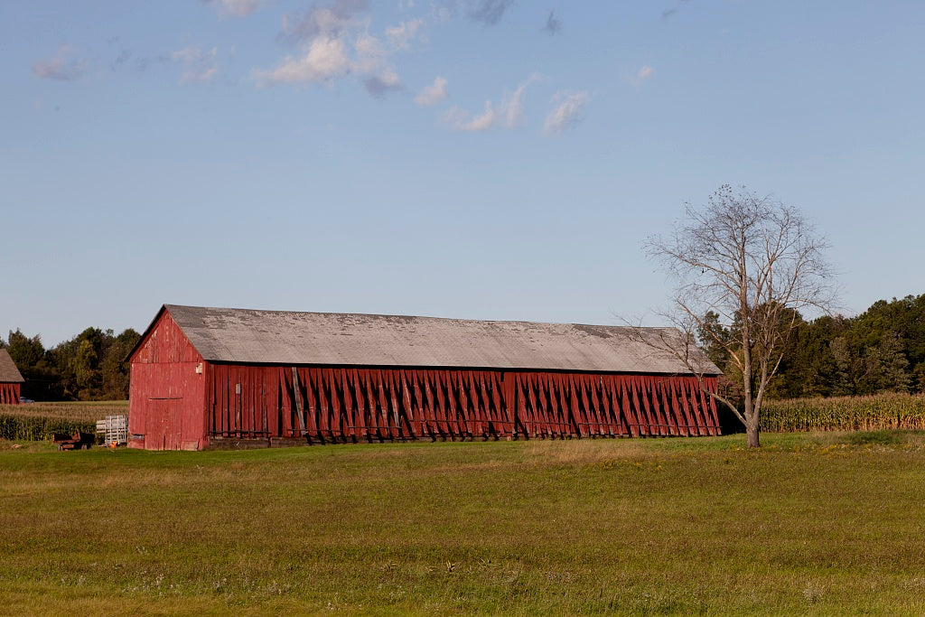 18 x 24 Photograph reprinted on fine art canvas  of Tobacco barns in Suffield Connecticut r62 2011 October by Highsmith, Carol M.