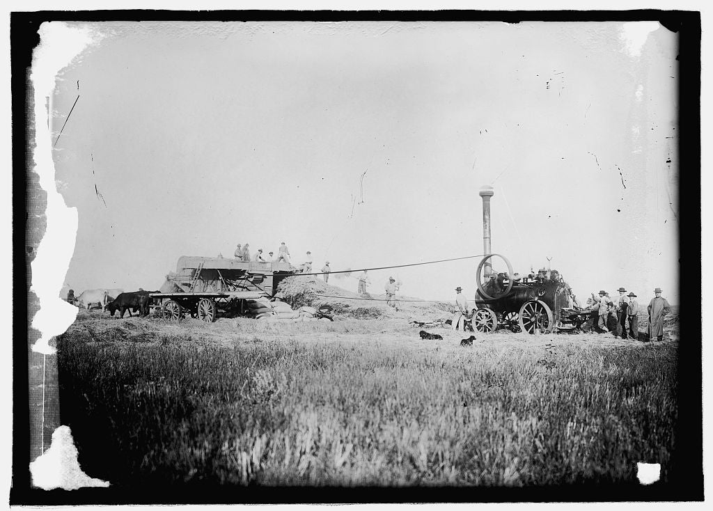16 x 20 Reprinted Old Photo ofThreshing scene, Buenos Aires 1914 National Photo Co  22a