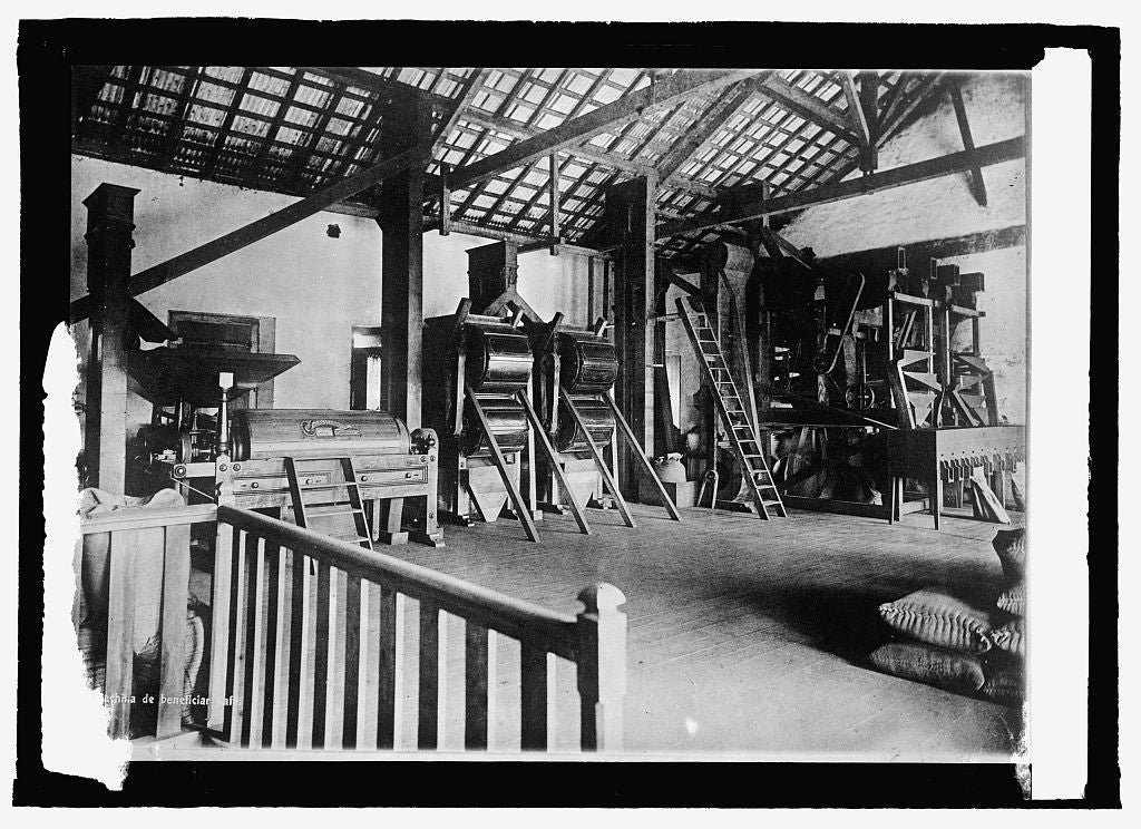 16 x 20 Reprinted Old Photo ofBrazil, a coffee warehouse in Santos 1915 National Photo Co  87a