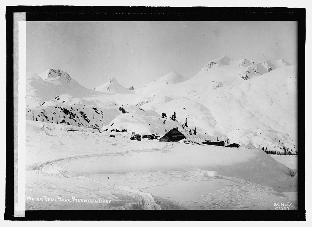 16 x 20 Reprinted Old Photo ofWinter Trail, Alaska 1915 National Photo Co  94a