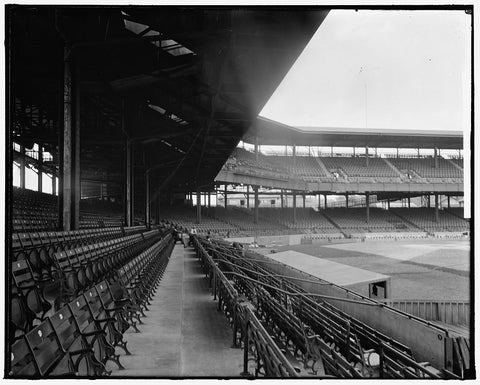 8 x 10 Reprinted Old Photo of Washington Baseball Grand Stand 1905-45 Harris & Ewing 60a