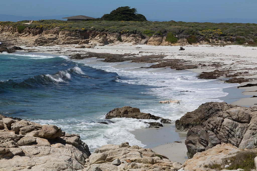 18 x 24 Photograph reprinted on fine art canvas  of View of Pacific ocean along 17-Mile Drive a scenic road through Pacific Grove and Pebble Beach on the Monterey Peninsula in California r91 2012 by Highsmith, Carol M.