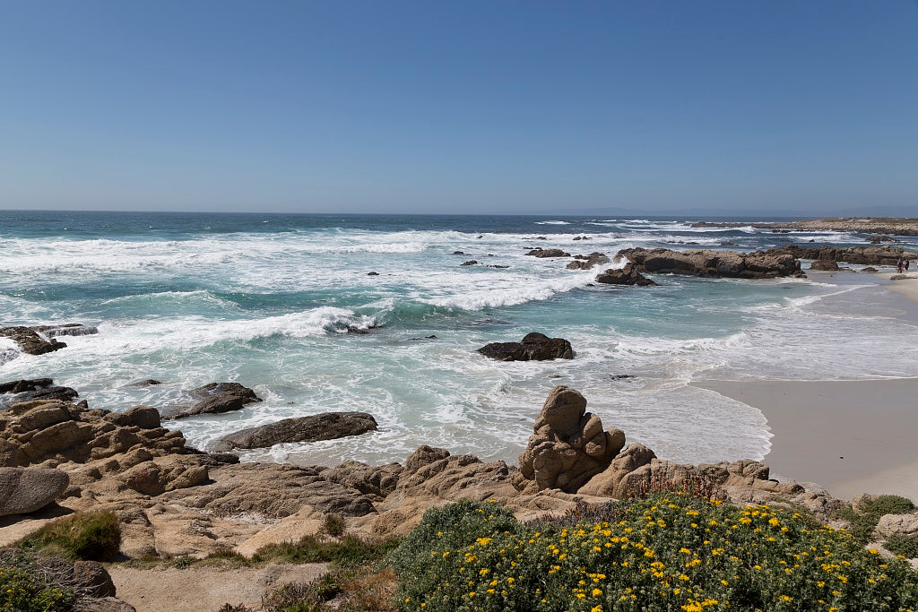 18 x 24 Photograph reprinted on fine art canvas  of View of Pacific ocean and beach along 17-Mile Drive a scenic road through Pacific Grove and Pebble Beach on the Monterey Peninsula in California r92 2012 by Highsmith, Caro