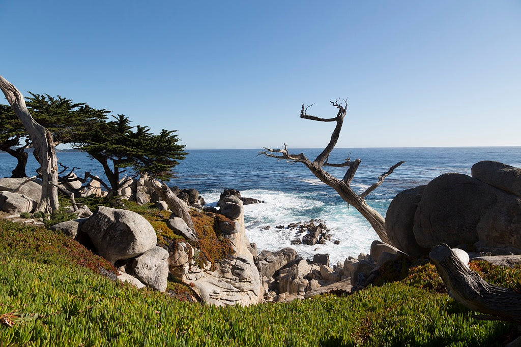18 x 24 Photograph reprinted on fine art canvas  of View of Pacific ocean ocean along 17-Mile Drive a scenic road through Pacific Grove and Pebble Beach on the Monterey Peninsula in California r03 2012 by Highsmith, Carol M.