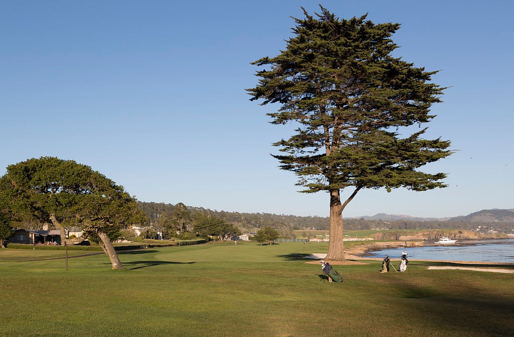 18 x 24 Photograph reprinted on fine art canvas  of Golf course near 17-Mile Drive a scenic road through Pacific Grove and Pebble Beach on the Monterey Peninsula in California r07 2012 by Highsmith, Carol M.