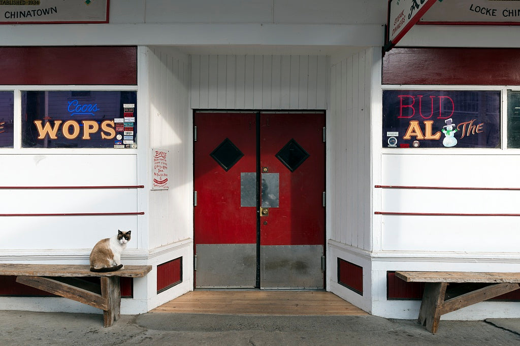 18 x 24 Photograph reprinted on fine art canvas  of Cat seated outside entrance to Al the Wop's in Locke an unincorporated community in the Sacramento/San Joaqin River Delta in California r99 2012 by Highsmith, Carol M.
