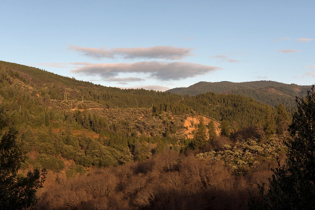 18 x 24 Photograph reprinted on fine art canvas  of Shasta National Forest view south of Dunsmuir in Siskiyou County California r29 2012 by Highsmith, Carol M.