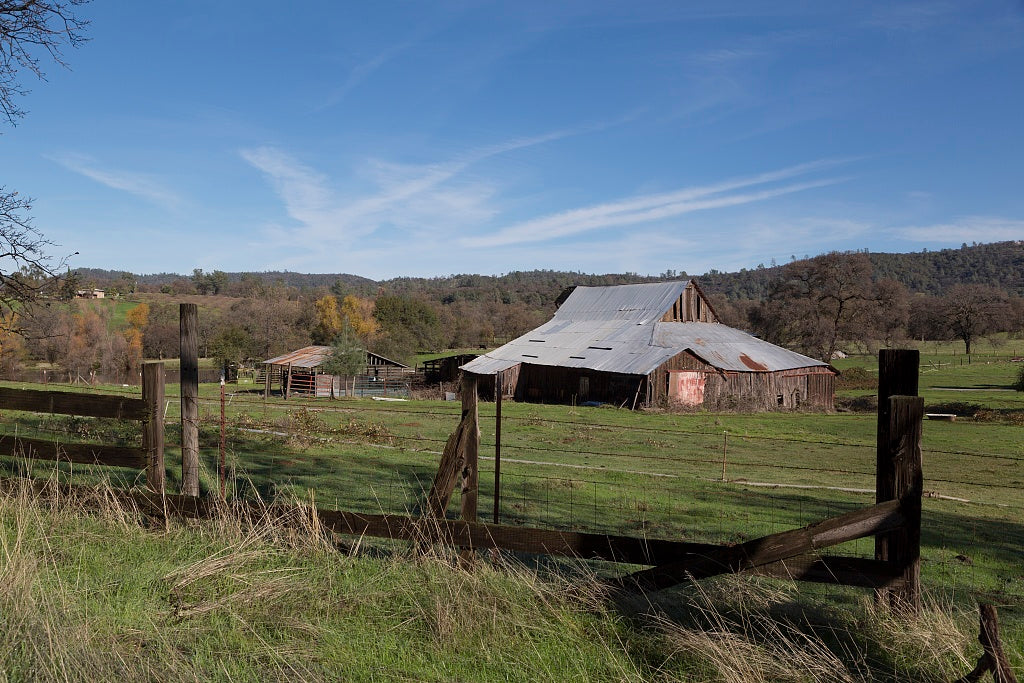 18 x 24 Photograph reprinted on fine art canvas  of A sizable barn near the settlement of Bangor south of Oroville in Butte County California r38 2012 by Highsmith, Carol M.