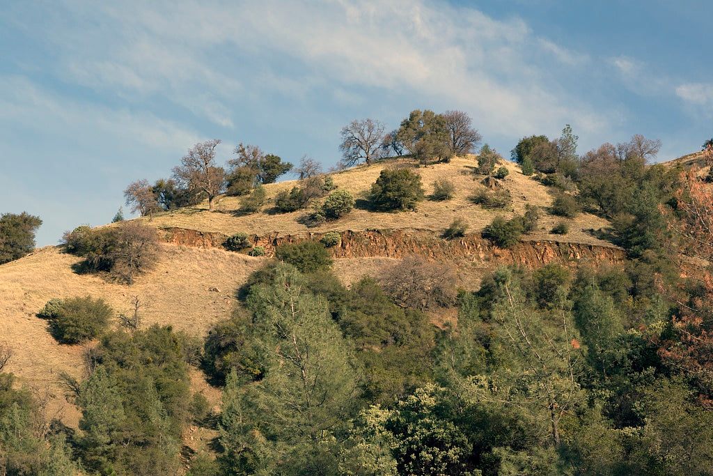 18 x 24 Photograph reprinted on fine art canvas  of A hillside near Lake Oroville high above the city of the same name in Butte County California r59 2012 by Highsmith, Carol M.