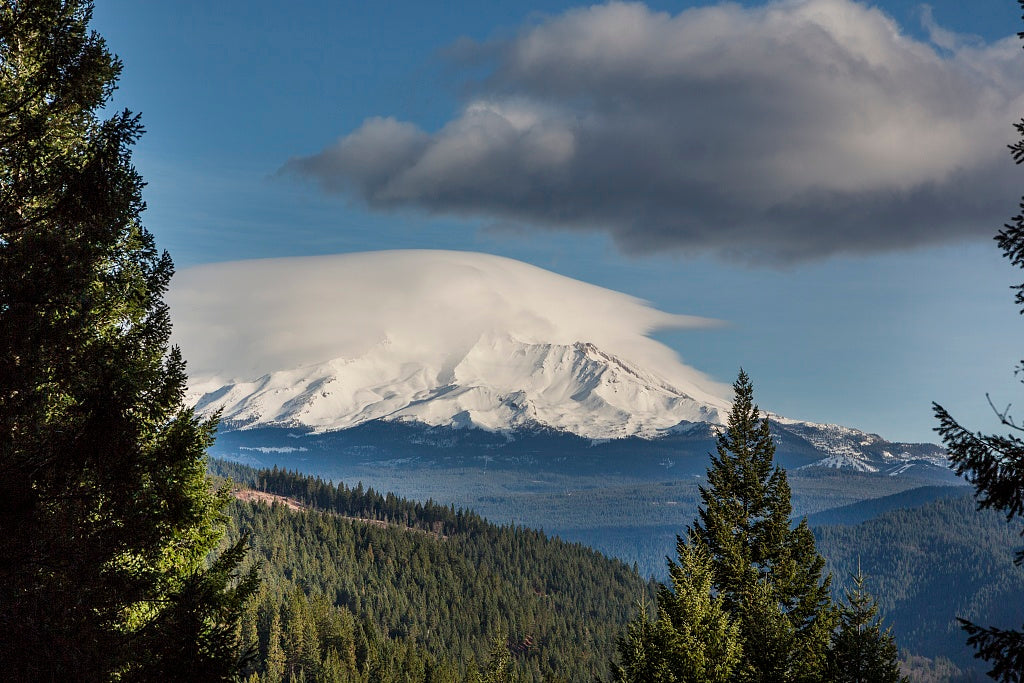 18 x 24 Photograph reprinted on fine art canvas  of Distant views of looming Mount Shasta located at the southern end of the Cascade Range in Siskiyou County California r60 2012 by Highsmith, Carol M.