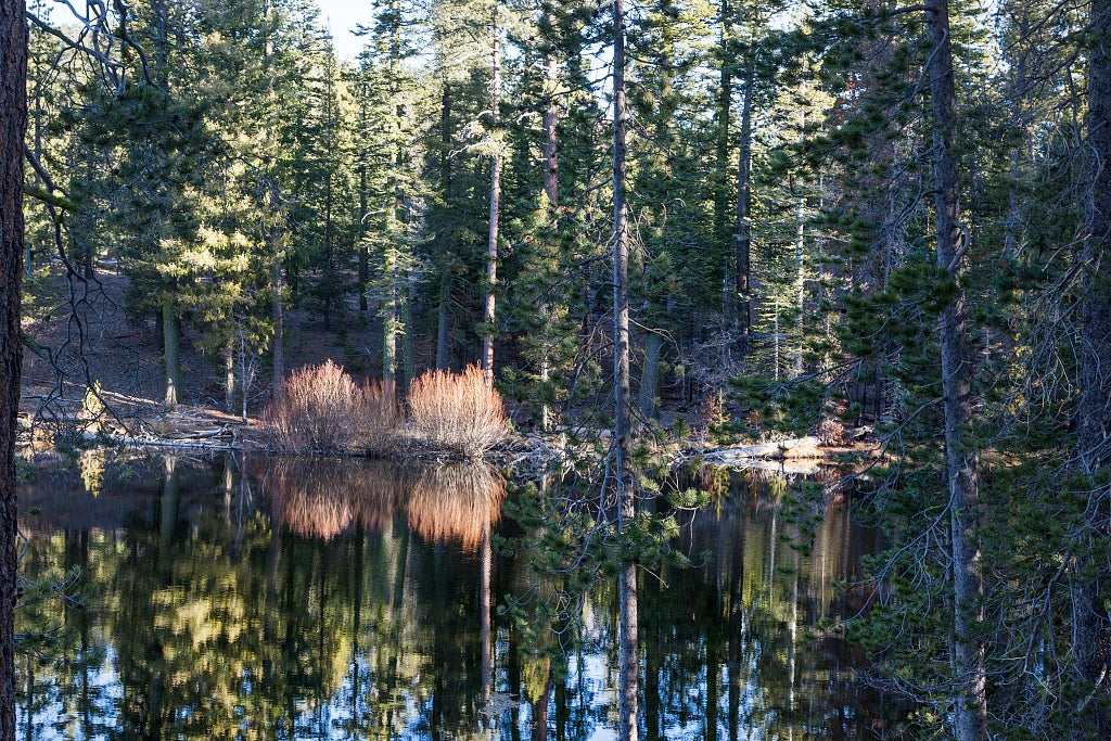 18 x 24 Photograph reprinted on fine art canvas  of A corner of Manzanita Lake at Lassen Volcanic National Park in Shasta and Lassen counties California r80 2012 by Highsmith, Carol M.