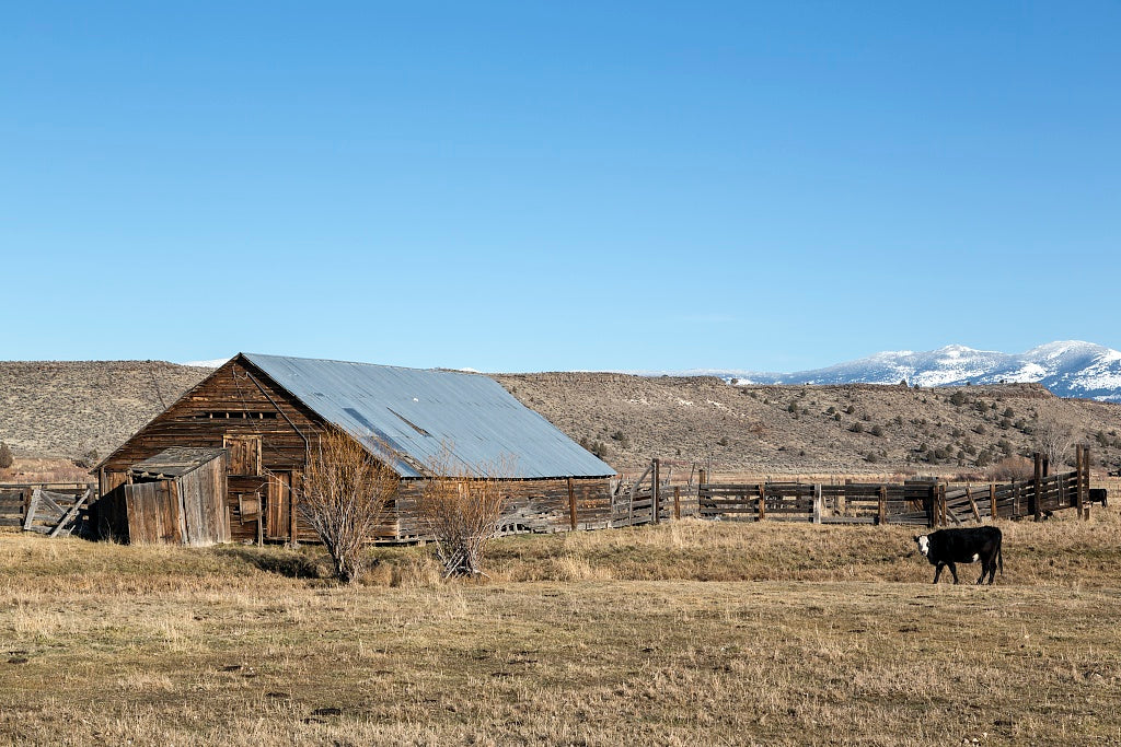 18 x 24 Photograph reprinted on fine art canvas  of An old but still functioning barn in Modoc County in far-northeastern California r88 2012 by Highsmith, Carol M.