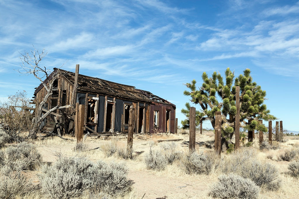 18 x 24 Photograph reprinted on fine art canvas  of Abandoned cabin near the ghost town of Cima in the Mojave National Preserve in California r10 2012 by Highsmith, Carol M.