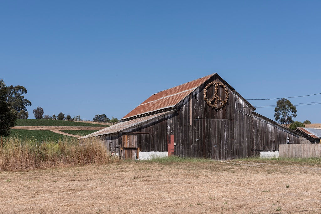 18 x 24 Photograph reprinted on fine art canvas  of Barn Watsonville California r79 2013 May by Highsmith, Carol M.