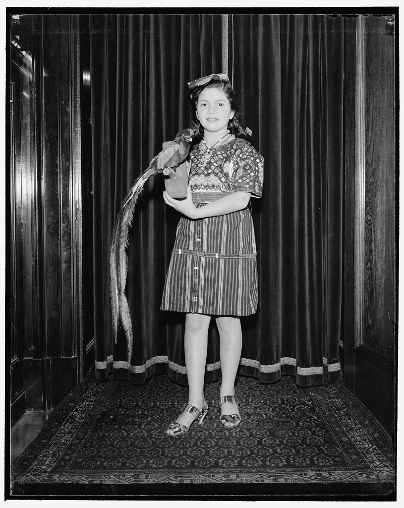 8 x 10 Reprinted Old Photo of Mary Recinos, Daughter Of The Minister Of Guatemala And Senora De Recinos 1940 Harris & Ewing 42a