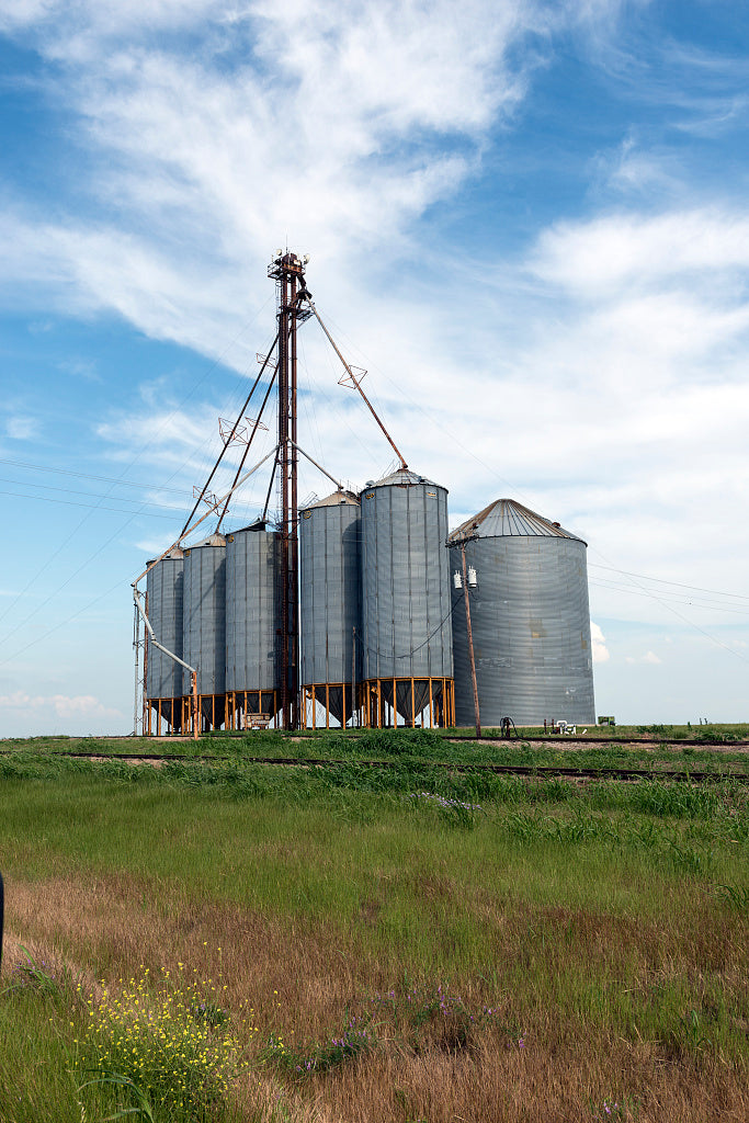 18 x 24 Photograph reprinted on fine art canvas  of Agricultural storage tanks in Fannin County in Northeast Texas r12 41781 by Highsmith, Carol M.