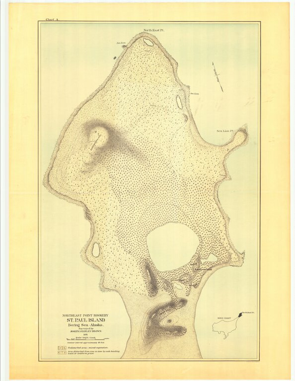 18 x 24 inch 1891 US old nautical map drawing chart of Northeast Point Rookery St. Paul Island Bering Sea - Alaska From  US Commission of Fish and Fisheries x26