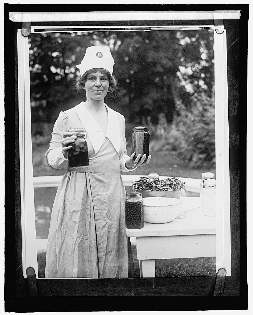 16 x 20 Reprinted Old Photo of Mrs. Ogden Mills Reed 1910 National Photo Co  68a